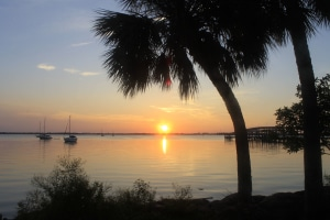 Palm trees and sunset over the water in Brevard FL